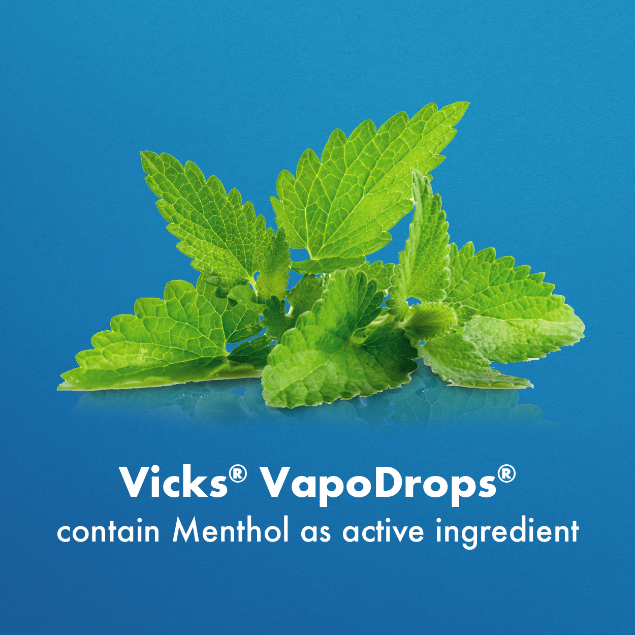 vicks drops Ingredient