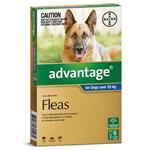 Advantage for Dogs over 25 kg 6 pack