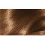 L'Oreal Excellence 6.30 Light Golden Brown
