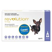 Revolution for Dogs Purple 2.6 - 5 kg 6 pack