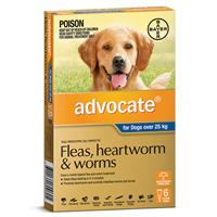 Advocate for Dogs Extra Large over 25 kg 6 pack
