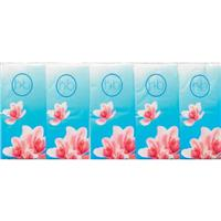 Health & Beauty Pocket Tissues 10 Piece x 10 Pack