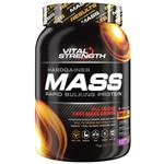 VitalStrength Hardgainer Mass Rapid Bulking Protein Chocolate Blast 1kg