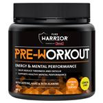 Pure Warrior Pre Workout 400g